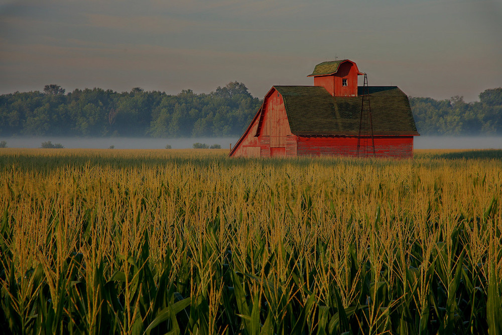 farm and crop insurance in Columbia MO | Mid-America Specialty Markets